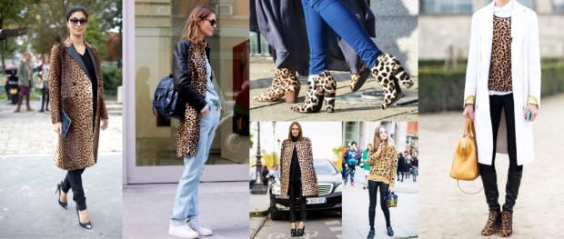 Leopardo-1024x436